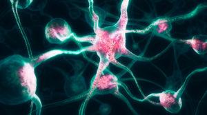 Передача сигналов между неронами