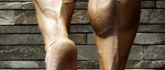 Мужские голени